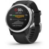 SmartWatch Garmin Fenix 6S (010-02159)