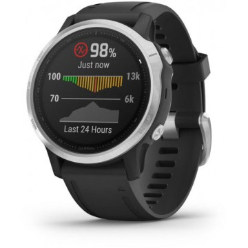 SmartWatch Garmin Fenix 6S (010-02159) Ceasuri